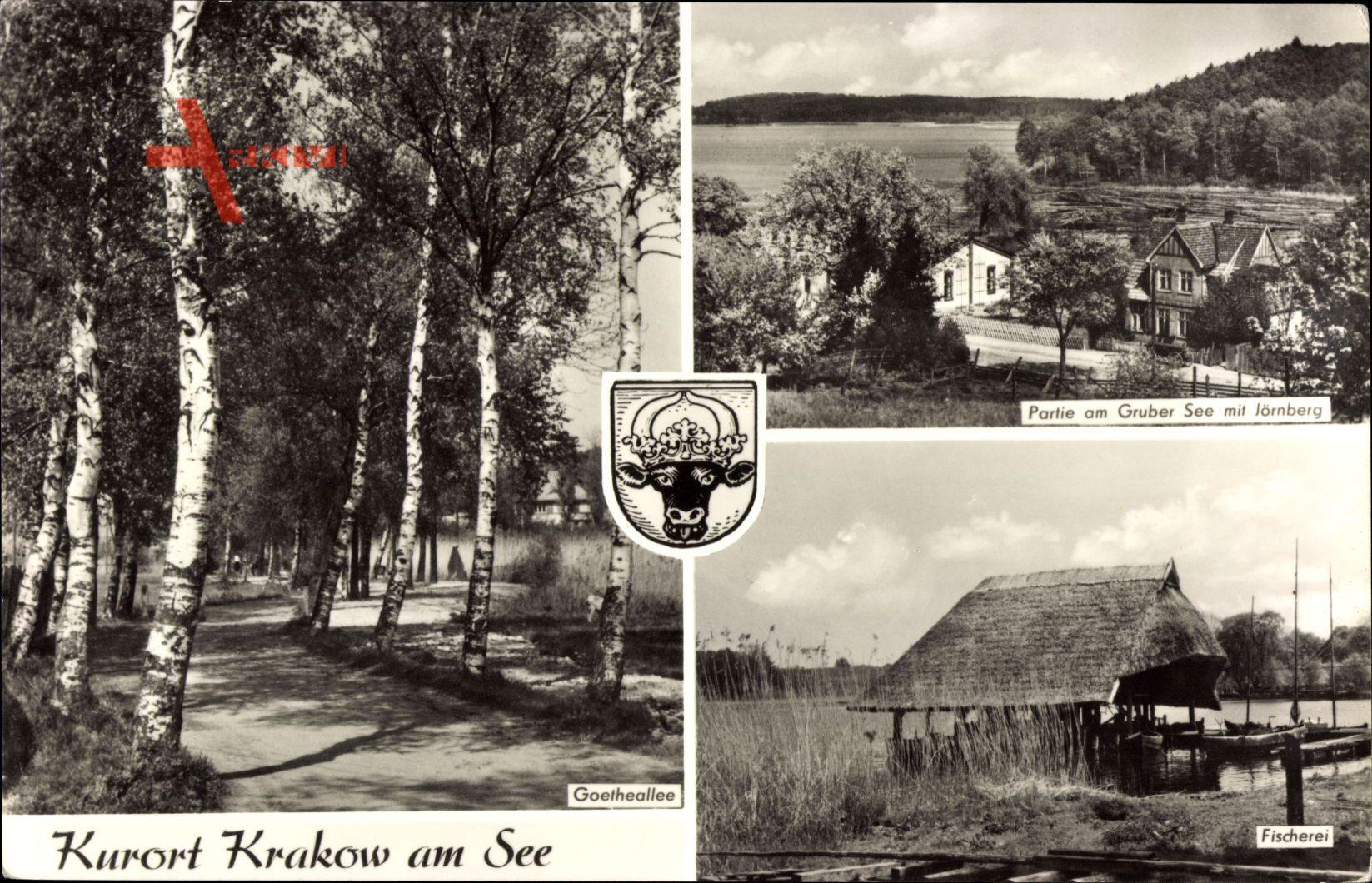 Wappen Krakow am See, Partie am Gruber See mit Jörnberg, Fischerei regional