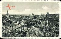 Lütjenburg in Schleswig Holstein, Panoramaansicht mit Kirschblüten