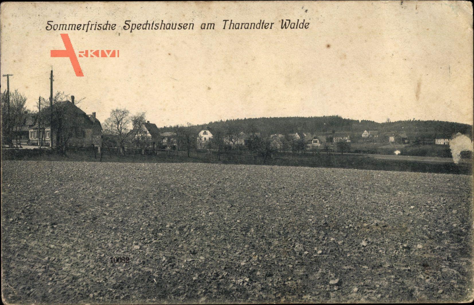 Spechtshausen Tharandt im Erzgebirge, Stadtpanorama, Feld, Masten