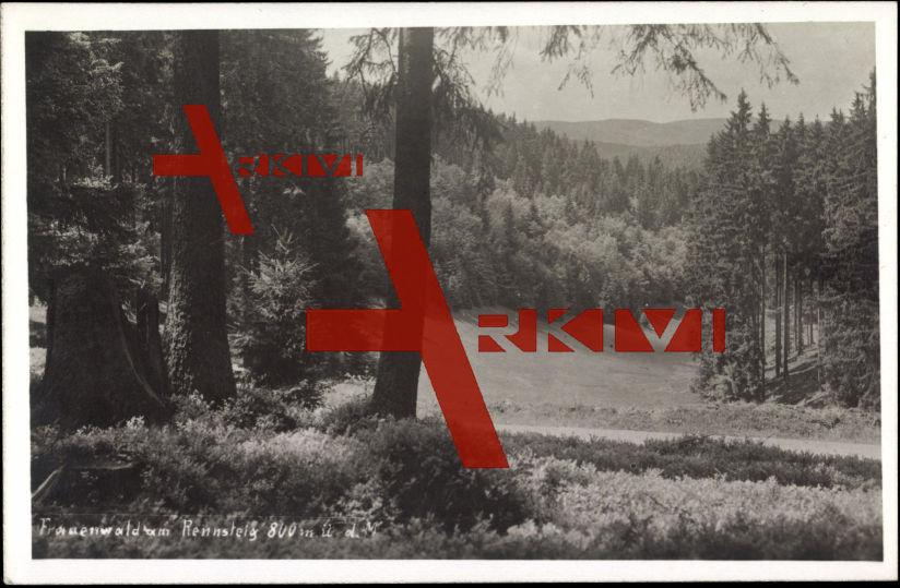 Frauenwald, Blick auf den Ort vom Rennsteig aus