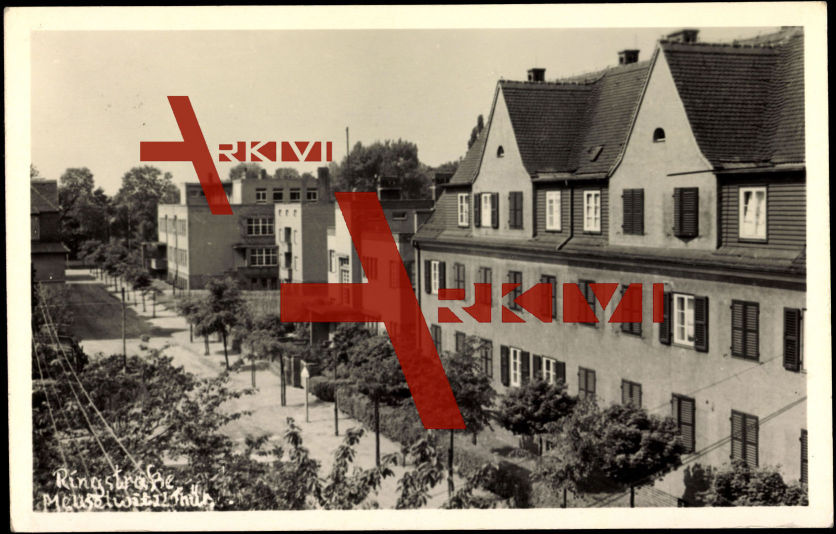 Meuselwitz, Blick in die Ringstraße mit Häusern