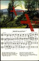 Liedkarten P. Roth., Waldrauschen, Landschaft