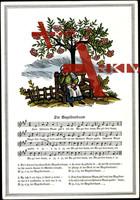 Lied , Schreyer M., Der Vugelbeerbaam, Alte Frau