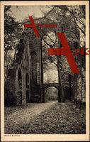 Eldena Mecklenburg, Ruine im Wald, Herbst