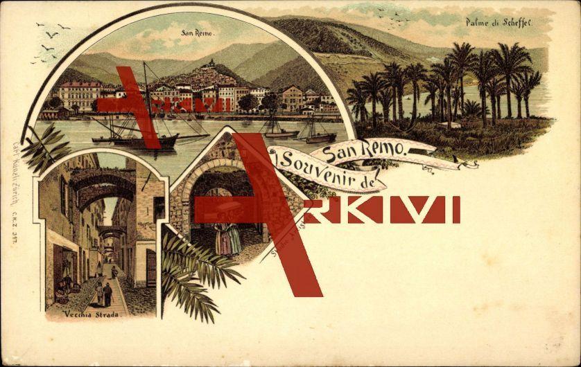 Sanremo Liguria, Palme di Scheffel, Gesamtansicht