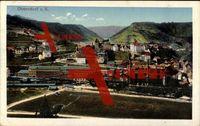 Oberndorf am Neckar, Blick zum Ort, Fabriken; gelaufen 1917, sehr guter Zustand; PLZ 78727