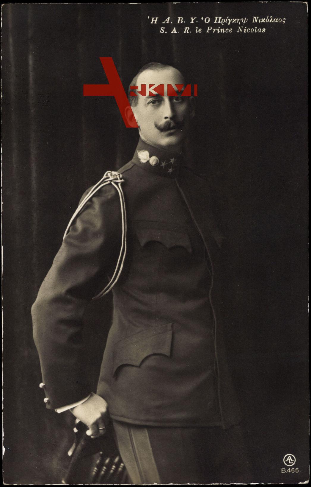 Prinz Nicolas von Griechenland, Uniform, Standportrait