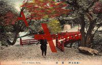 Kyoto Japan, View of Takaoo, Garten, Herbst, Holzbrücke