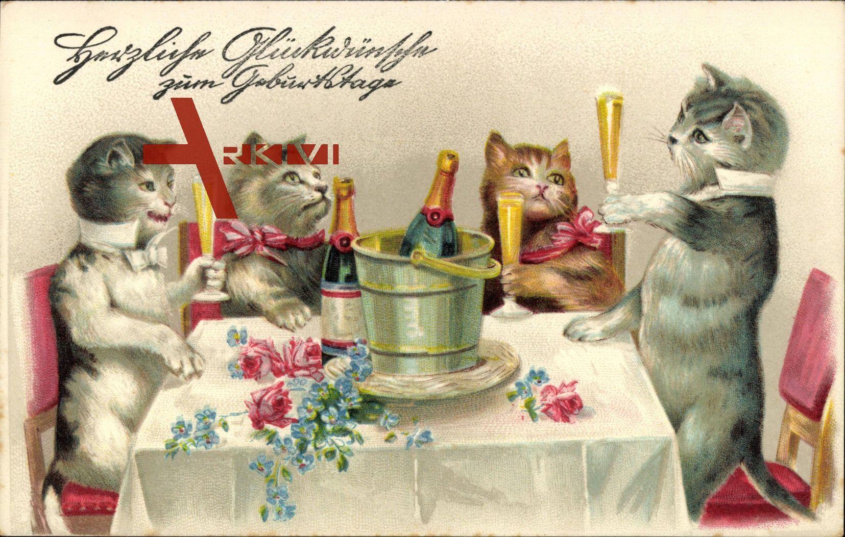 Gluckwunsch Geburtstag Katzen Trinken Sekt Vermenschlicht Xl