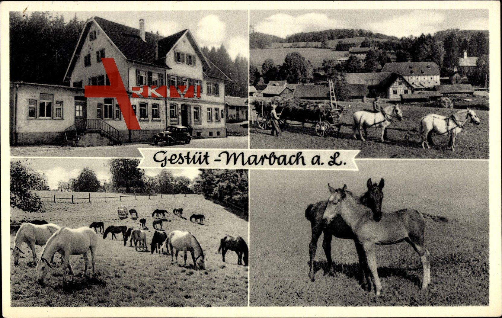 Beste Spielothek in Marbach an der Lauter finden
