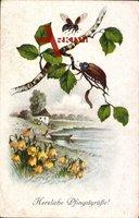 Glückwunsch Pfingsten, Maikäfer auf einem Birkenast, Frühling