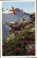 Schweizer Alpen, Ziegen am Bergabhang, Bauernhof, Frühling, Alpen