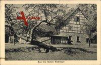 Meiningen Thüringen, Fachwerkhaus, Alter Baum, Frühling