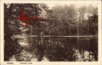 Itzehoe Kreis Steinburg, Blick auf den Eichtaler Teich