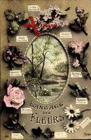 Langage des Fleurs, Blumensprache, Frankreich, Lilas, Hous, Pensée
