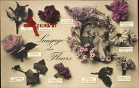 Langage des Fleurs, Blumensprache, Gui, Pensée, Lilas, Oeuillet
