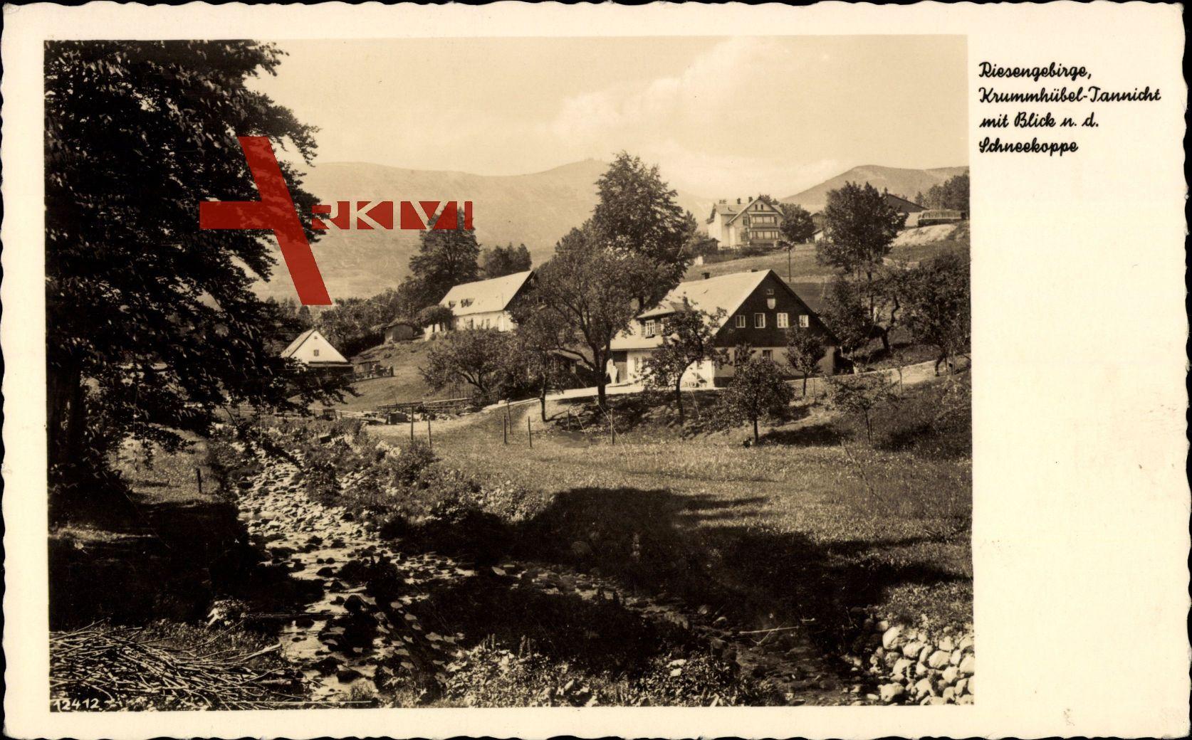 Karpacz Krummhübel Riesengebirge Schlesien, Blick n. d. Schneekoppe