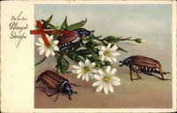 Glückwunsch Pfingsten, Maikäfer, Weiße Feldblumen