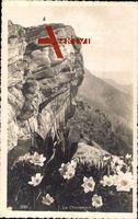 Le Chasseron, Gipfel im Waadtländer Jura in der Schweiz