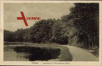 Itzehoe Schleswig Holstein, Karpfenteich im Breitenburger Gehölz
