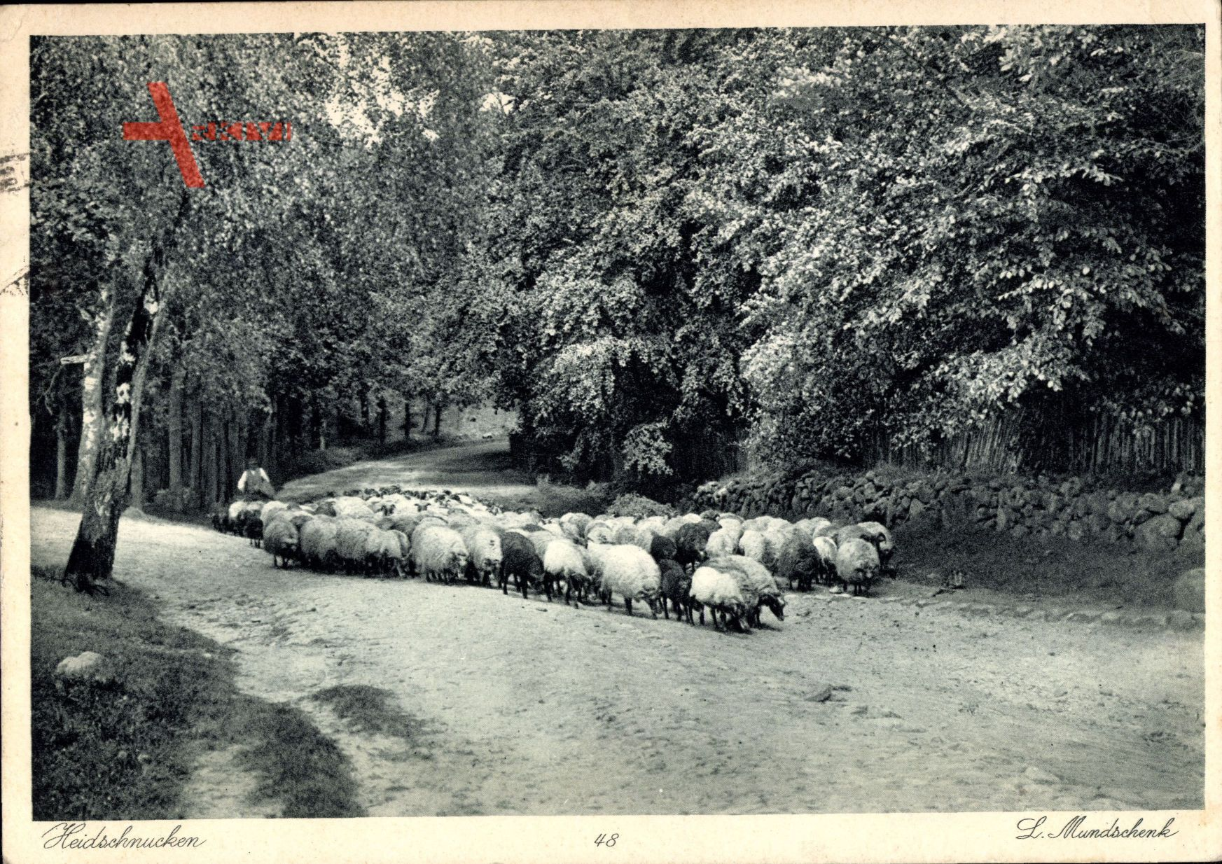 Uelzen Hannover, Heidschnucken, Hirte mit Schafherde im Wald
