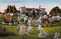 Luzern Stadt Schweiz, Hotel Sonnenberg, Frühling, Baumblüte