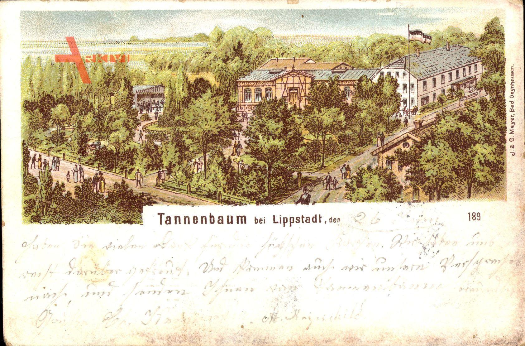 Gaststätte Tannenbaum.Tannenbaum Lippstadt Im Kreis Soest Parkpartie Gasthaus Passanten