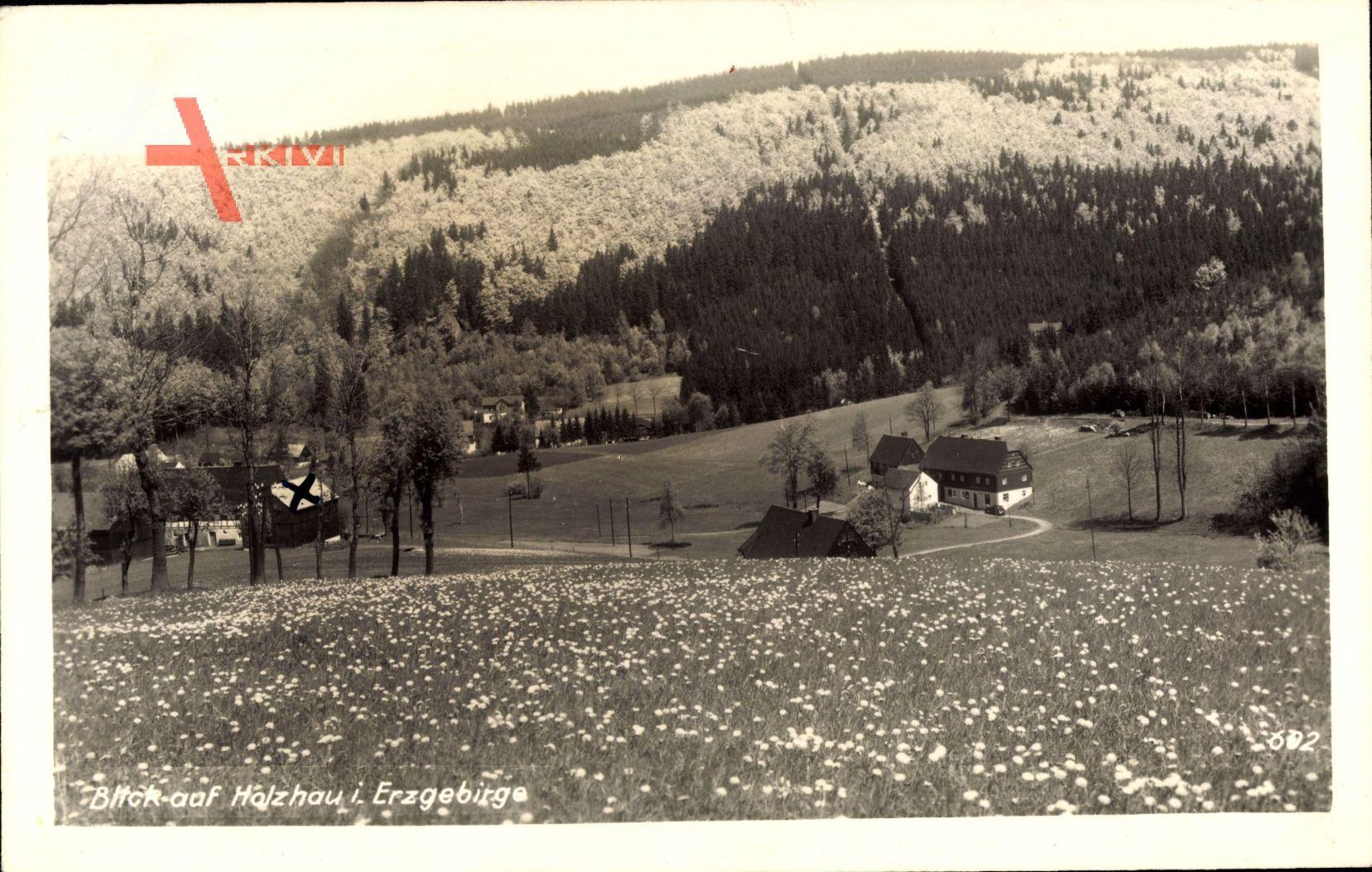 Holzhau Rechenberg Bienenmühle Erzgebirge, Frühling, Ort, Felder