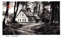 Itzehoe in Schleswig Holstein, Blick vom Wald auf Haus Amonenhöhe