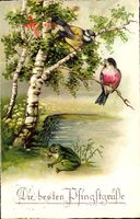 Glückwunsch Pfingsten, Zwei Spatzen auf einer Birke, Frosch am Wasser