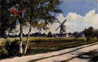 Blick zu einer Windmühle, Birken, Feldweg, Frühling