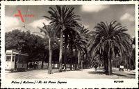 Palma de Mallorca Balearen, Paseo Sagrera, Straßenbahn, Palmen