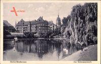 Berlin Weißensee, Am Schwanenteich, Partie am Wasser, Schwäne