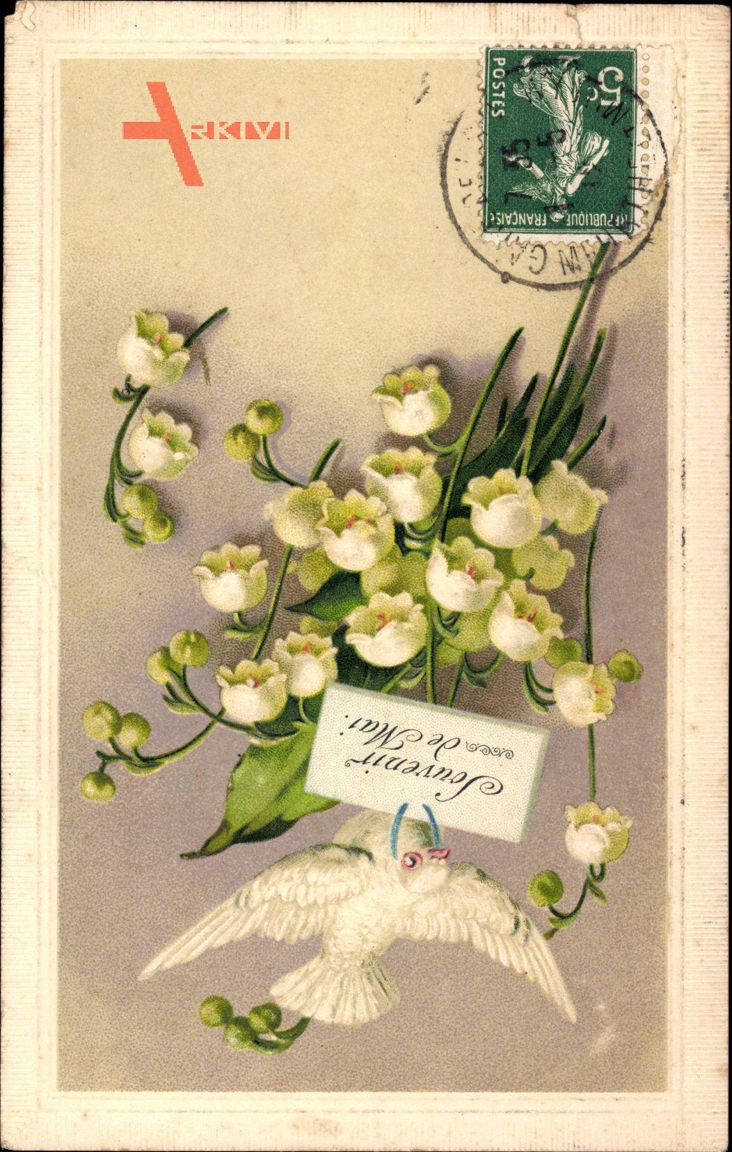 Souvenir de Mai, Frühling, Weiße Taube, Glockenblumen