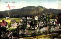 Oybin im Zittauer Gebirge, Blick auf den Ort im Frühling
