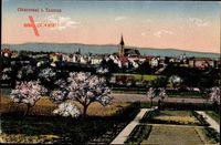 Oberursel Taunus, Gesamtansicht mit Kirchturm, Kirschblüten