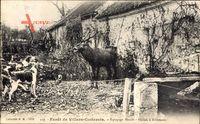 Villers Cotterets Aisne, Forêt, Équipage Menier, Hallali à Billemont