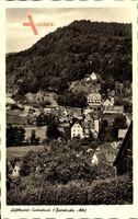 Eschenbach Fränkische Alb, Höheluftkurort, Stadtpanorama, Waldhang
