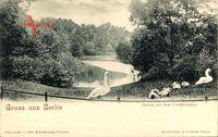Berlin Friedrichshain, Parkpartie mit Teich und Schwanfamilie
