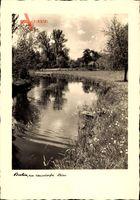 Berlin Reinickendorf Hermsdorf, Flusspartie, Ufer, Blumen, Bäume, Wiese