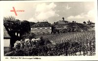 Radebeul im Kreis Meißen, Staatsweingut Hoflößnitz, Blick vom Feld