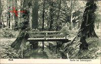 Partie im Schlosspark mit Brücke über die Panke zwischen Bäumen in Berlin Pankow Buch um 1916