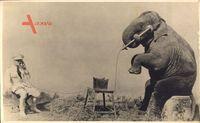 Sitzender Elefant mit Wärter, Telefon, Kunststück