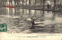 Chasse à Courre, Equipage de Chantilly, Un Bat l'Eau, Hirschjagd