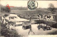 Monrtefontaine Oise, La Chasse au Cerf, Hallali, Hirschjagd, Jagdhunde