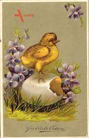 Glückwunsch Ostern, Küken steht auf einem Osterei