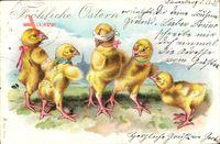 Glückwunsch Ostern, Fünf Küken spielen Blinde Kuh