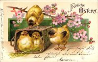 Glückwunsch Ostern, Zwei Küken sitzen in einem Korb, Blütenzweig