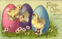 Glückwunsch Ostern, Küken schlüpfen aus gefärbten Eiern, Ostereier