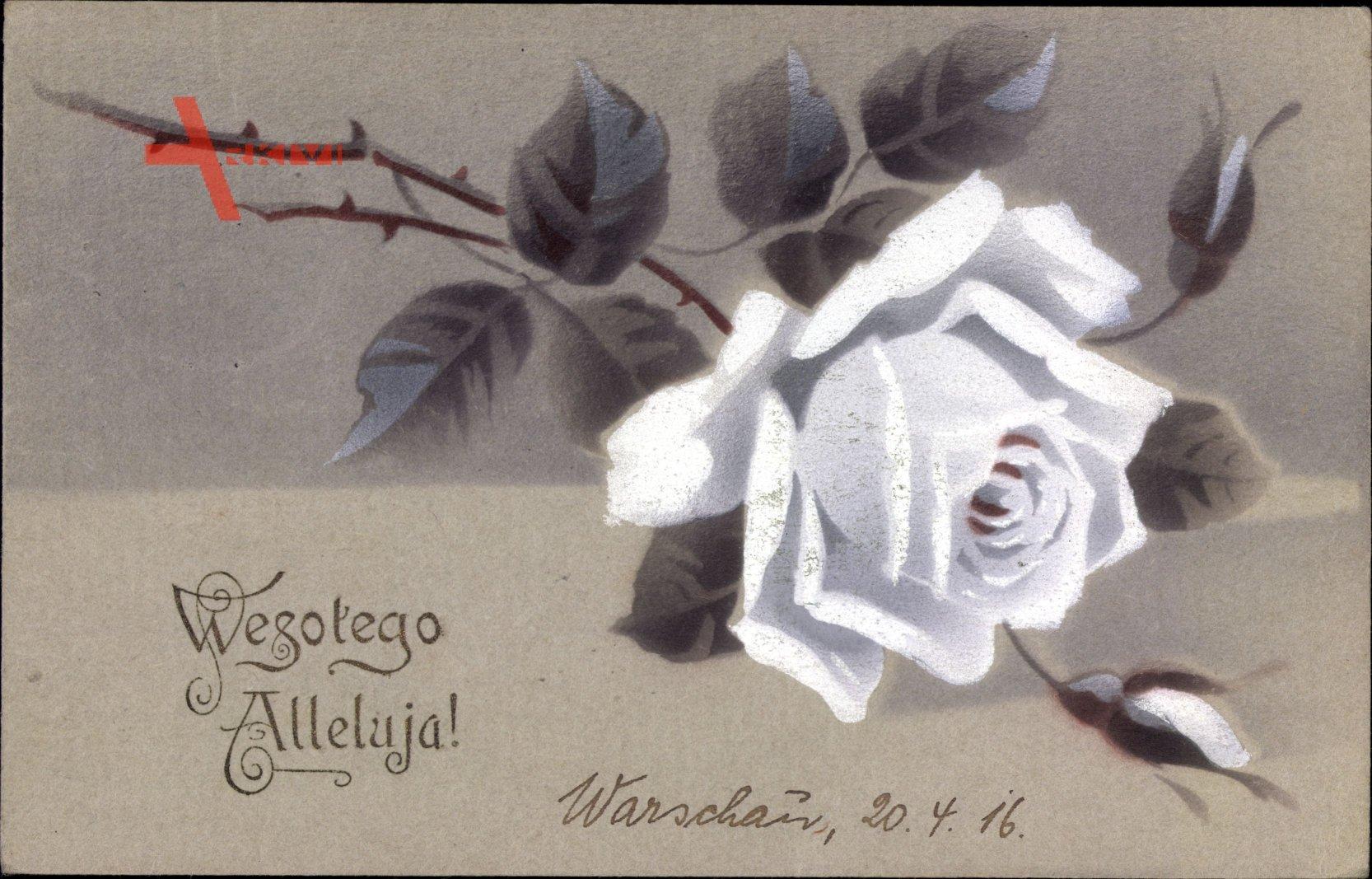 Glückwunsch Ostern, Wesolego Alleluja, Weiße Rose, Polnisch